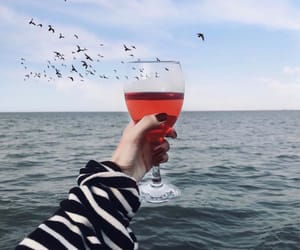 birds, hand, and ocean image