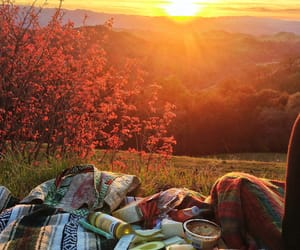 picnic, summer, and relax image
