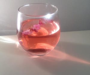 beverages, drinks, and flowers image