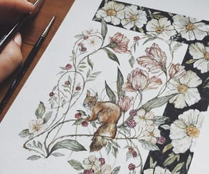 botany, flower, and squirrel image