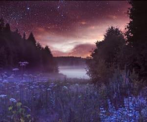 nature, purple, and sky image