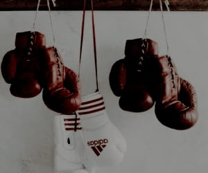 boxing and sport image
