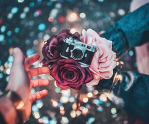 camera, photography, and brandon woelfel image