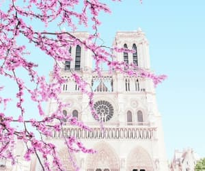architecture, notre dame, and cathedral image
