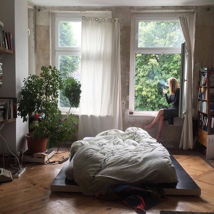 room, plants, and interior image