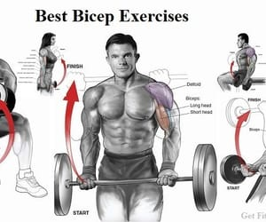 bicep workouts, best arm workouts, and best bicep exercises image