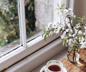 tea, window, and cup image