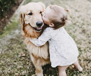 dog, baby, and animal image