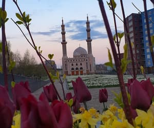 color, flowers, and islam image