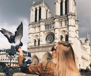 bird, blonde girl, and building image