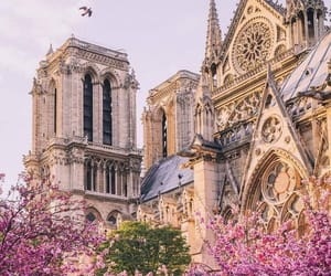 travel, cathedral, and france image