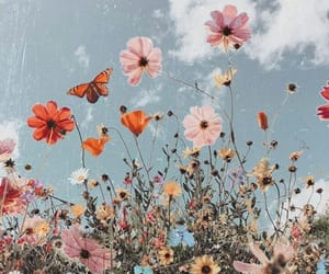blue sky, butterfly, and flowers image