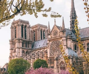 article, cathedral, and france image