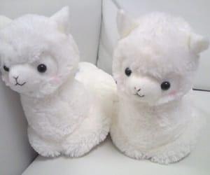 cute, white, and alpaca image