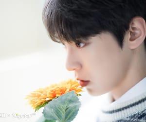 doyoung, idol, and kpop image