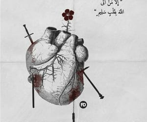quran, heart, and عربي image