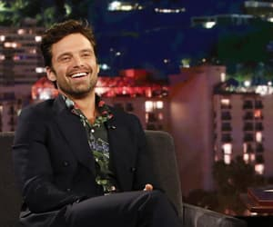 handsome, sebastian stan, and sexy image