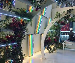 rainbow, plants, and aesthetic image