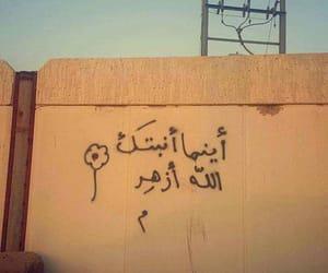 arabic, hope, and mural image