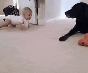 babies, dog, and golden retriever image