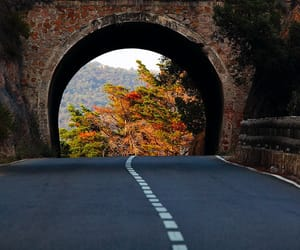 adventure, road, and highway image