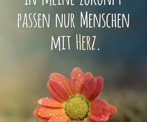 deutsch, herz, and text image