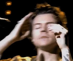 gif, Harry Styles, and hair image