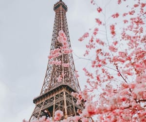 aesthetic, paris, and pink image