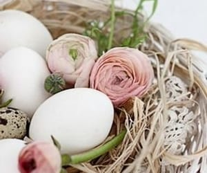 colors, easter, and decoration image