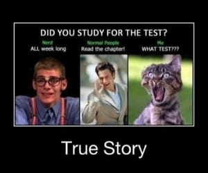 funny, laugh, and school image