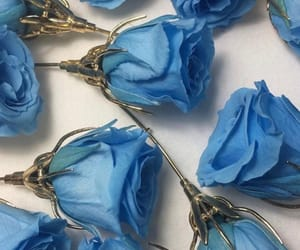 accessories, blue rose, and earrings image