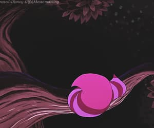 alice in wonderland, cats, and gif image