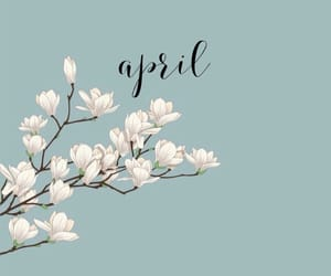 wallpaper, flowers, and april image