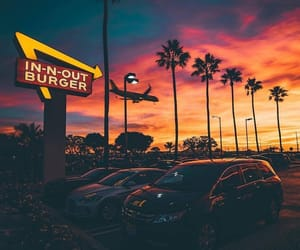 cars, fast food, and palm trees image