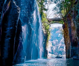 nature, japan, and photography image