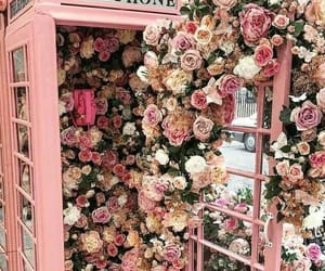 flowers, telephone, and pink image
