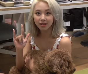 twice and chaeyoung image