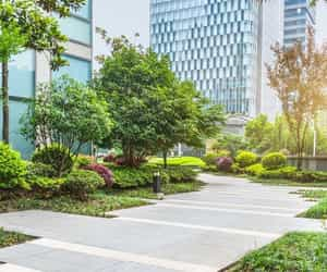 landscaping services image