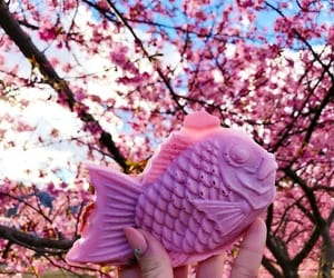 pink, asian, and fish image