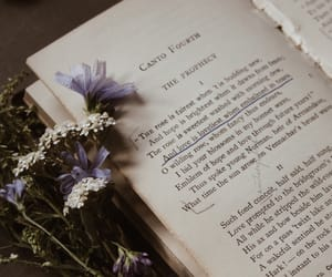 book, flowers, and old books image