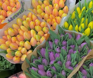 beautiful, easter, and flowers image