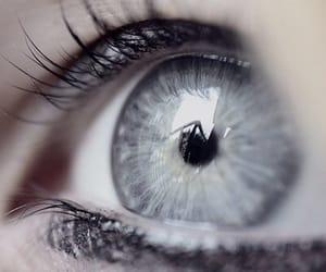 eyes and grey eyes image