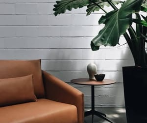 couch, design, and home image