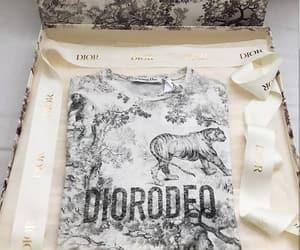 dior and shirt image