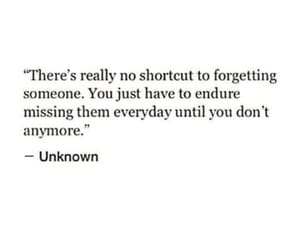 quotes, couple, and heartbreak image