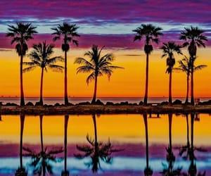 adventure, beach, and Miami image