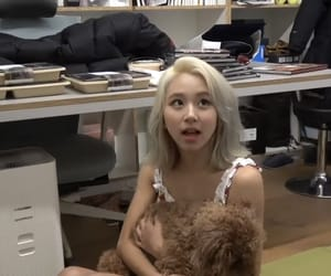 fancy, once, and chaeyoung image