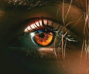 eyes and photography image