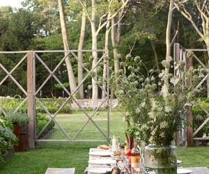 backyard, dinner, and interior image