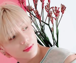 gif, SHINee, and k-pop image